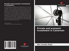 Borítókép a  Private and economic investment in Cameroon - hoz