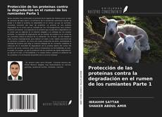 Capa do livro de Protección de las proteínas contra la degradación en el rumen de los rumiantes Parte 1