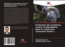 Обложка Protection des protéines contre la dégradation dans le rumen des ruminants Partie 1