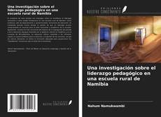 Capa do livro de Una investigación sobre el liderazgo pedagógico en una escuela rural de Namibia