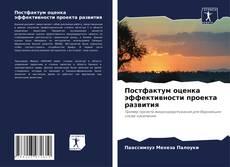 Обложка Постфактум оценка эффективности проекта развития