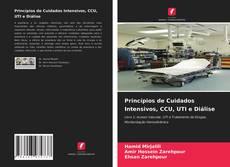 Bookcover of Princípios de Cuidados Intensivos, CCU, UTI e Diálise