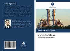 Bookcover of Umweltprüfung