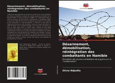 Borítókép a  Désarmement, démobilisation, réintégration des combattants en Namibie - hoz