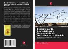 Desarmamento, Desmobilização, Reintegração de Combatentes na Namíbia的封面