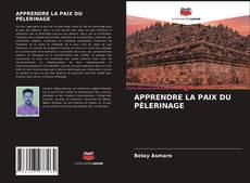 Portada del libro de APPRENDRE LA PAIX DU PÈLERINAGE