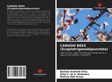 Borítókép a  CANUDO BEES (Scaptotrigonabipunctata) - hoz