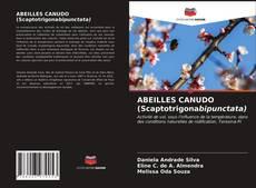 Copertina di ABEILLES CANUDO (Scaptotrigonabipunctata)