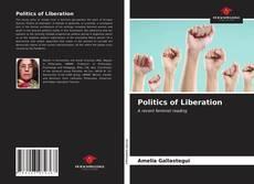 Borítókép a  Politics of Liberation - hoz