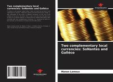 Bookcover of Two complementary local currencies: SoNantes and Galléco