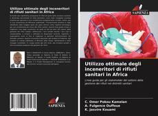 Buchcover von Utilizzo ottimale degli inceneritori di rifiuti sanitari in Africa