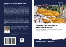 Borítókép a  Эффект от сортов и внесения азота - hoz