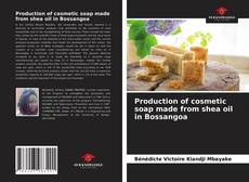 Couverture de Production of cosmetic soap made from shea oil in Bossangoa