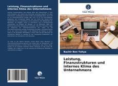 Buchcover von Leistung, Finanzstrukturen und internes Klima des Unternehmens