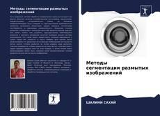 Couverture de Методы сегментации размытых изображений