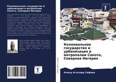 Portada del libro de Колониальное государство и урбанизация в метрополии Сокото, Северная Нигерия