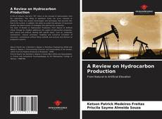 Bookcover of A Review on Hydrocarbon Production
