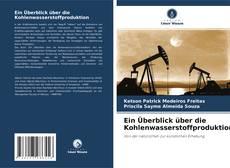 Portada del libro de Ein Überblick über die Kohlenwasserstoffproduktion