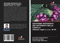 Bookcover of GESTIONE INTEGRATA DEI NUTRIENTI NELLA CIPOLLA (Allium cepa L.) cv. N-53