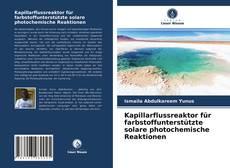 Buchcover von Kapillarflussreaktor für farbstoffunterstützte solare photochemische Reaktionen