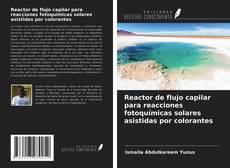 Portada del libro de Reactor de flujo capilar para reacciones fotoquímicas solares asistidas por colorantes