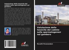 Buchcover von Valutazione della tossicità del cadmio sulla spermatogenesi nel gambero