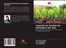 Couverture de Capacité de fixation du phosphore des sols