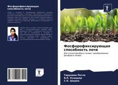 Фосфорофиксирующая способность почв kitap kapağı