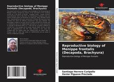 Bookcover of Reproductive biology of Menippe frontalis (Decapoda, Brachyura)