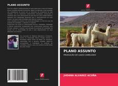 Borítókép a  PLANO ASSUNTO - hoz
