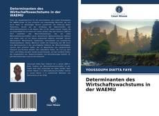 Capa do livro de Determinanten des Wirtschaftswachstums in der WAEMU
