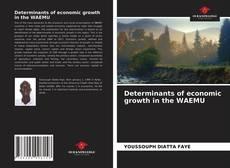 Capa do livro de Determinants of economic growth in the WAEMU