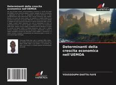 Capa do livro de Determinanti della crescita economica nell'UEMOA
