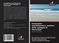 Bookcover of Evoluzione morfodinamica costiera della spiaggia di Maracaípe