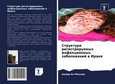 Capa do livro de Структура регистрируемых инфекционных заболеваний в Ираке