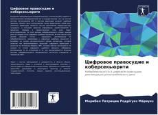 Bookcover of Цифровое правосудие и коберсекьюрити