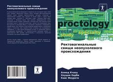 Bookcover of Ректовагинальные свищи неопухолевого происхождения