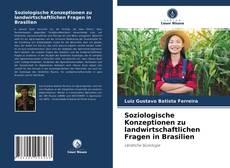 Обложка Soziologische Konzeptionen zu landwirtschaftlichen Fragen in Brasilien