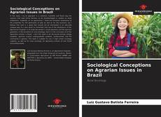 Bookcover of Sociological Conceptions on Agrarian Issues in Brazil
