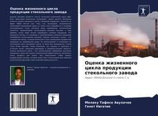 Оценка жизненного цикла продукции стекольного завода kitap kapağı