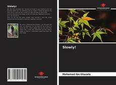 Bookcover of Slowly!