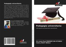 Pedagogia universitaria:的封面