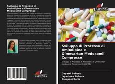 Copertina di Sviluppo di Processo di Amlodipina e Olmesartan Medoxomil Compresse