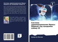 Bookcover of Система здравоохранения Ирака: Первый год пандемии ковид-19