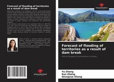 Copertina di Forecast of flooding of territories as a result of dam break