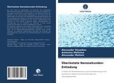 Überlastete Nanosekunden-Entladung kitap kapağı