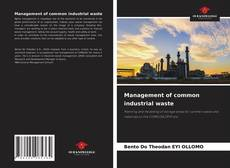 Bookcover of Management of common industrial waste