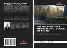Buchcover von Economic cooperation between the DRC, Burundi and Rwanda