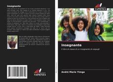 Bookcover of Insegnante