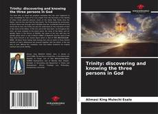 Trinity: discovering and knowing the three persons in God的封面